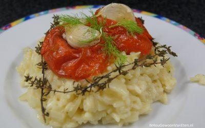Risotto met venkel en gepofte tomaat